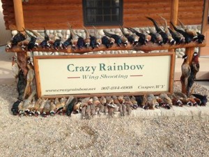 Hunting on the Crazy Rainbow Bird Ranch with the folks from Brake Supply