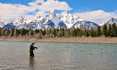 fly fishing guides daily report, Fly Fishing Bait