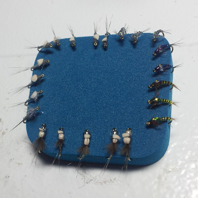 Bar Flies hosted by the Ugly Bug Fly Shop Tonight!