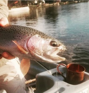 Platte River Fishing Report