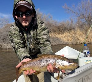 Alec Bacon with a nice Big Horn Brown Trout