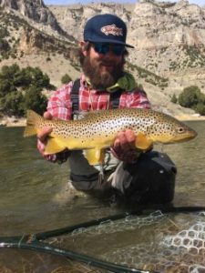 All About Brown Trout.